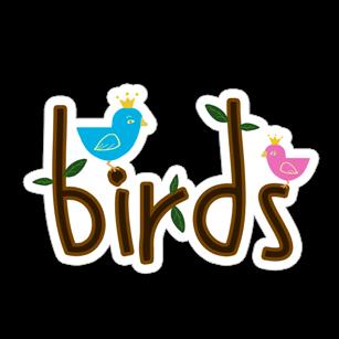 1116_burenka_birds