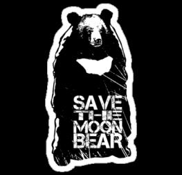 Медвед стикер