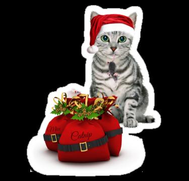 1338 Кот с подарками