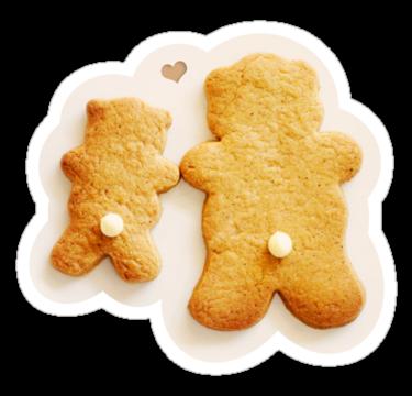 1519 Ginger Bears