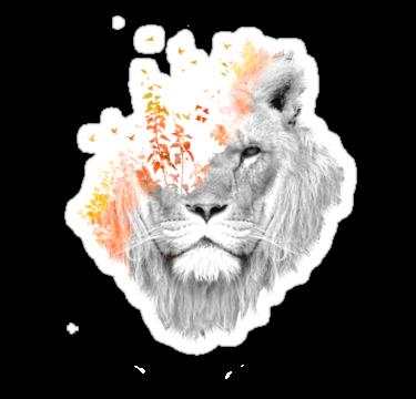 1551 If I roar
