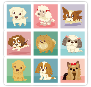 1615 Many poses of puppies