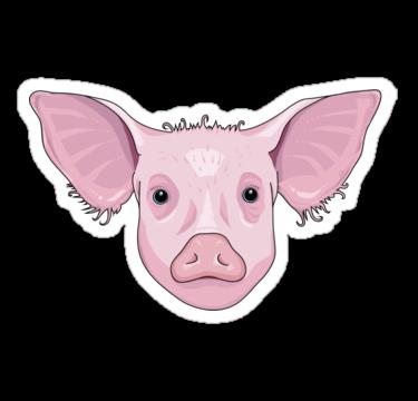1680 Pig