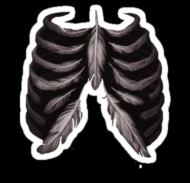 1686 Plumage Bones