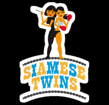 1728 Siamese Twins