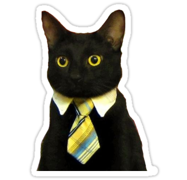 1873 Business Cat