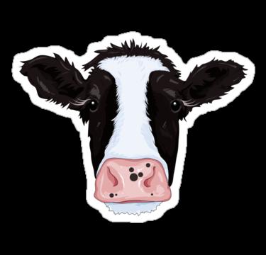 1890 Cow