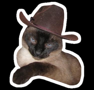 1891 Cowboy