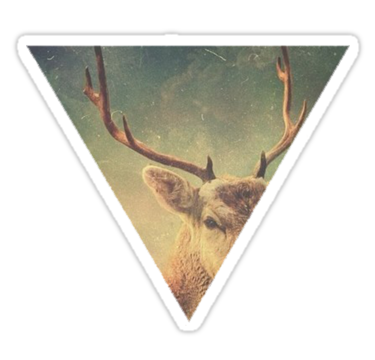1905 Deer Triangle