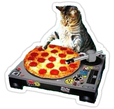 1909 DJ pizza cat