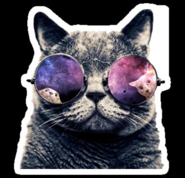 1938 galactic cat
