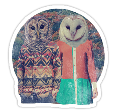 1960 Hipster Guys Owls