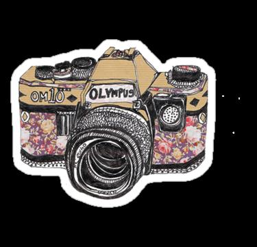 2002 Olympus Camera Flowers
