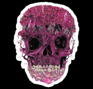 2014 Pink Skull