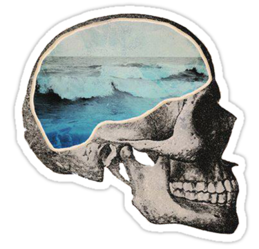2043 Sea Skull
