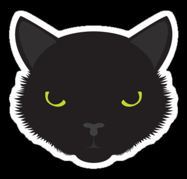 2124 Black Cat1