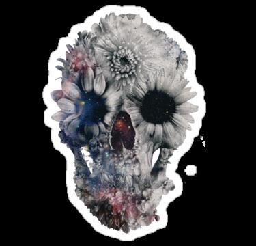 2156 Floral Skull 2