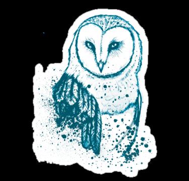 2205 Owl Tee