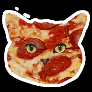 2405 CatPizza