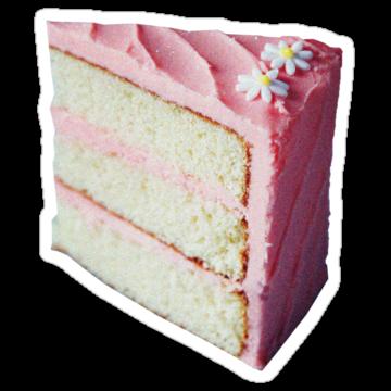 2523 Pink Cake