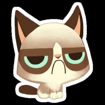 2860 Grumpy Kitten