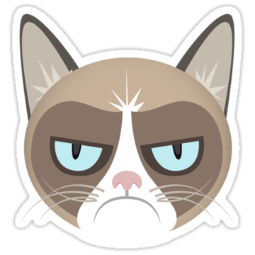 2861 Grumpy The Cat