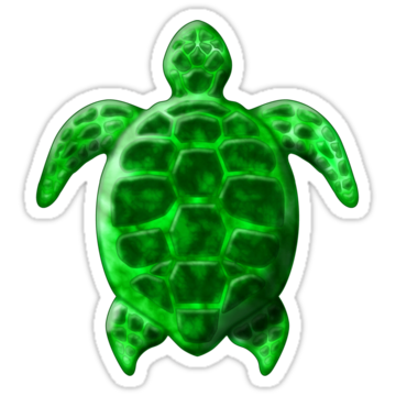 2936 Green Sea Turtle