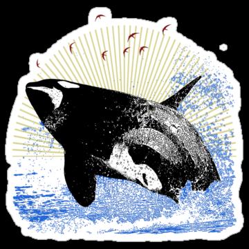 2941 Killer Whale