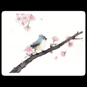 2982 Cherry Tree