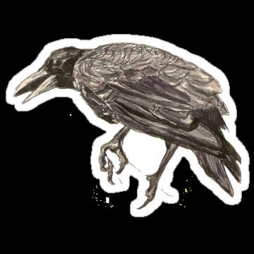 2984 Crow