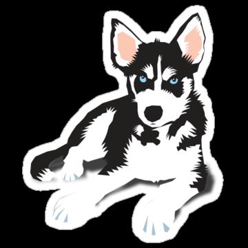 3073 Sweet Husky