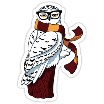 3092 Hipster Owl