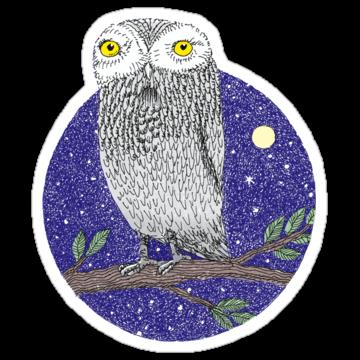3100 Night Owl