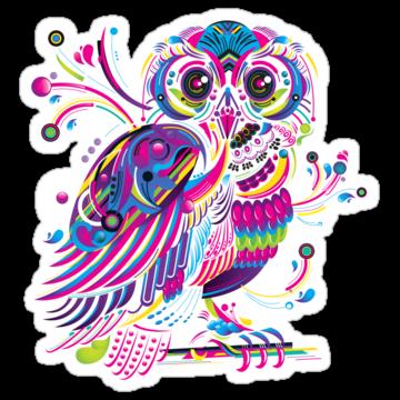 3102 OWL