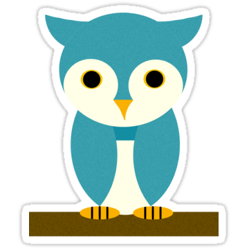 3124 Teal Owl