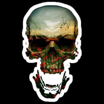 5181 Field of Skull