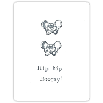 5194 Hip Hip Hooray!