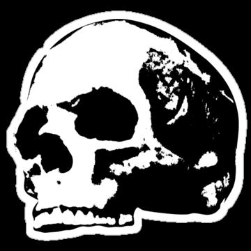 5197 Human Skull