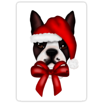 5264 Boston Terrier Christmas Hat