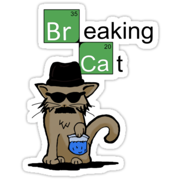 Breaking Cat